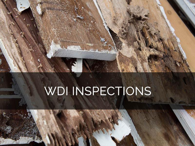san antonio wdi-inspections